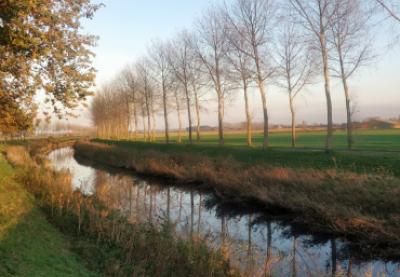 Ontdek de mooiste landelijke wandelroutes!